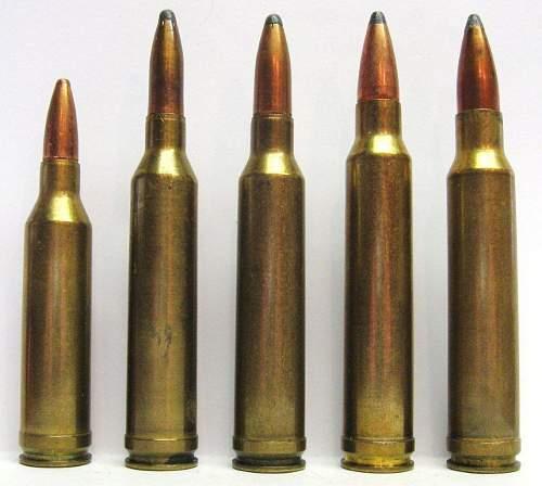 Belted Magnums