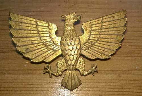 Unknown possible POLISH eagle badge ??