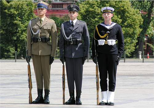 The Polish Armed Forces and Society
