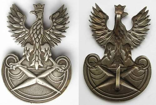 Agencja Wywiadu (Polish intelligence agency) eagle 2004