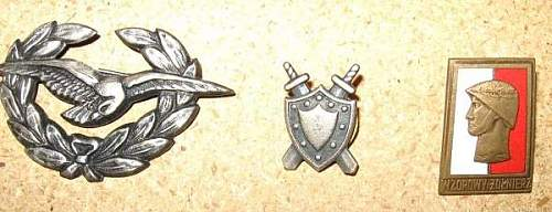 Polish Badges..what era?