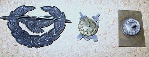 Polish Badges..what era?