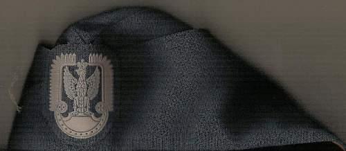 Polish Airforce Sidecap?
