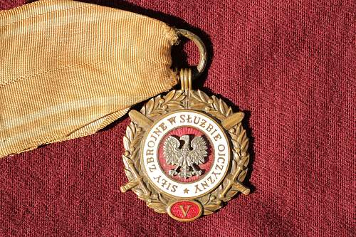 Click image for larger version.  Name:Polish badge and McFake 018.jpg Views:203 Size:285.0 KB ID:360911
