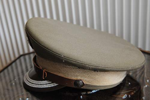 Polish visor cap question