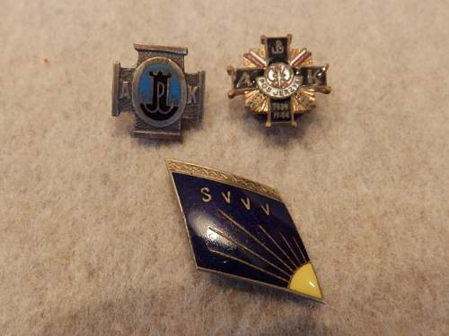 Help kindly requested  to ID Polish badges please...