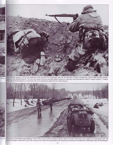 Click image for larger version.  Name:waffen-ss-at-war-10-638.jpg Views:89 Size:115.3 KB ID:976076