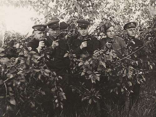 Officers of the RKKF and RKKA with pistols