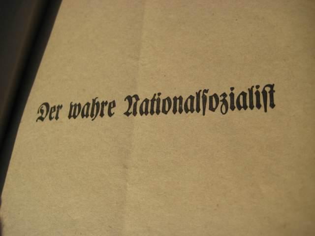 nazi party essay