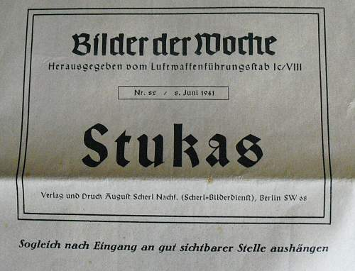 Stuka, picture of the week?