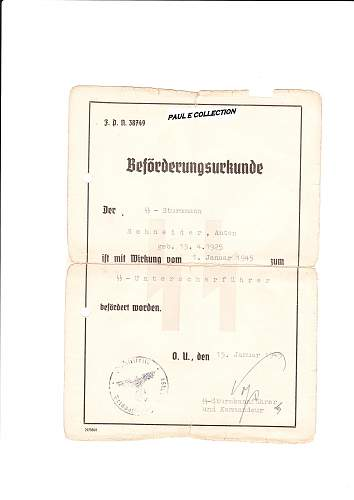 SS Promotion Documents