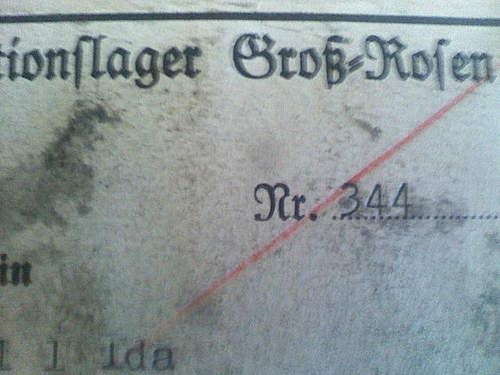 Kl Gross - Rosen Ausweis