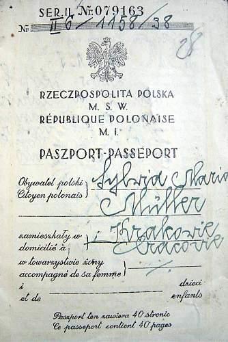 Polish passport...visas