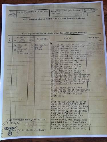 Translation of documents, KZ Ausw. Birk. Wehrpass