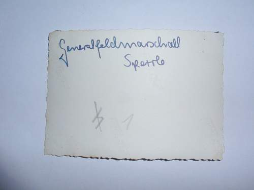 Hugo Sperrle Generalfeldmarschall of the Luftwaffe ?