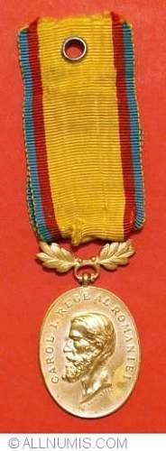 Click image for larger version.  Name:medal romanaina.jpg Views:75 Size:57.6 KB ID:522835