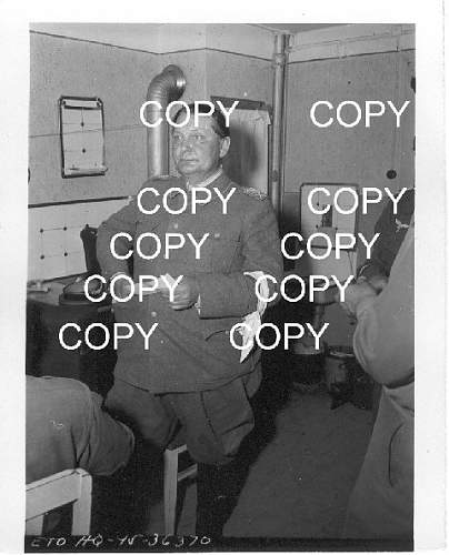 Click image for larger version.  Name:Goering2.jpg Views:26 Size:58.9 KB ID:531133