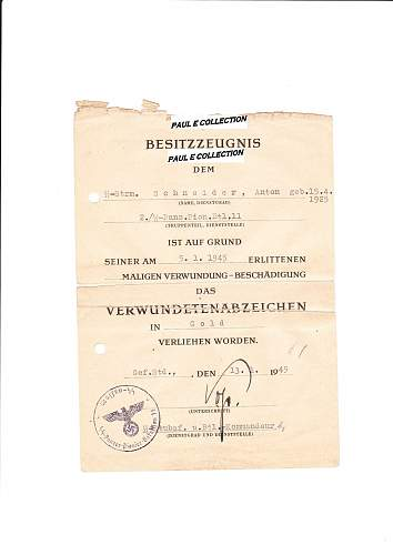 SS Division Nordland documents !!