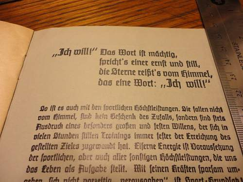 Click image for larger version.  Name:HitlerYouth_11.JPG Views:19 Size:138.5 KB ID:591668