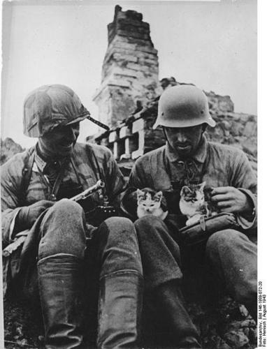 Name:  two_german_soldiers_enjoying_the_co_2047931842.jpg