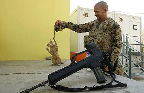 Click image for larger version.  Name:soldiers-cat_999213i.jpg Views:3573 Size:39.7 KB ID:598307
