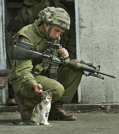 Soldiers and animals :)