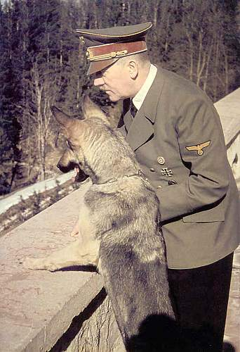 Click image for larger version.  Name:hitler with blonde.jpg Views:76 Size:55.3 KB ID:598626