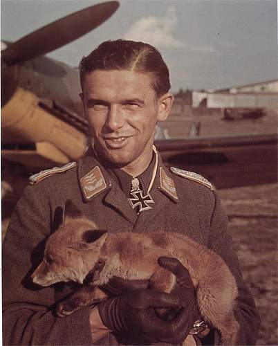 Click image for larger version.  Name:luftwaffe with fox.jpg Views:112 Size:90.2 KB ID:598628
