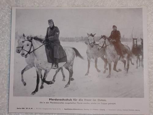 Click image for larger version.  Name:Pferdenachschub für dir Front im Osten.jpg Views:28 Size:106.3 KB ID:614247