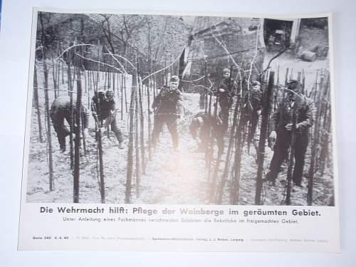 Click image for larger version.  Name:Die Wehrmact hilft- Pflege der Weinbergw im geräumten Gebiet 4-4-40.jpg Views:121 Size:213.0 KB ID:644907