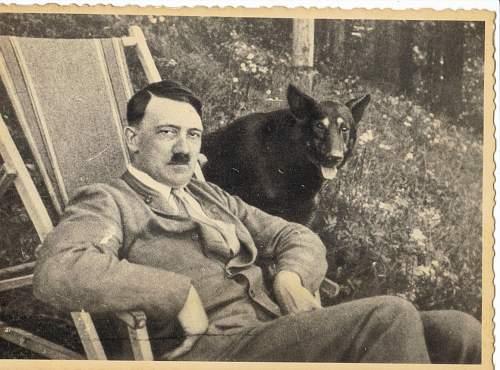 Click image for larger version.  Name:Hitler 3.jpg Views:157 Size:171.2 KB ID:680768