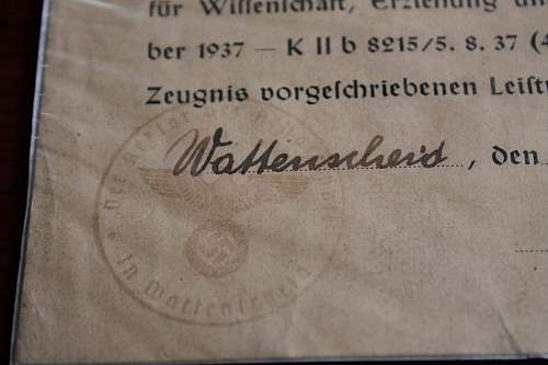 Schivimm=Zeugnis document, please help to ID