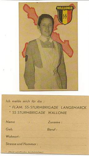 Waffen-SS Wallonien recrutation card to ID