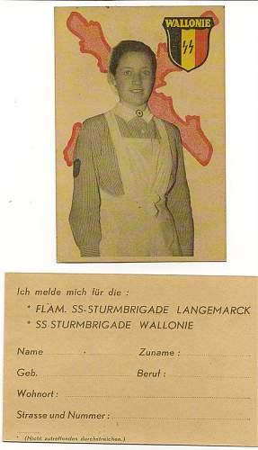 Waffen-SS Wallonien recrutation card to ID