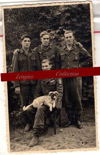 SS-Totenkopf , Demjanskschild, Nahkampfspange SILBER!