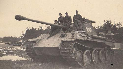 Click image for larger version.  Name:Panther.jpg Views:90 Size:64.4 KB ID:854050
