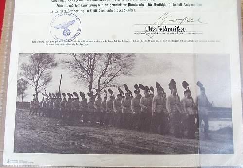 Emsland Urkunde