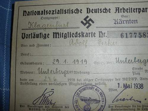 Adolf Pirker Luftwaffe grouping