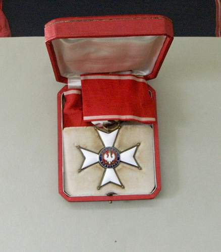 Polishboys polonia restituta collection