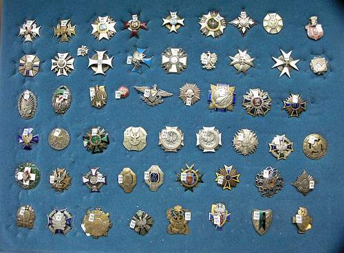 POLISHBOYS BADGES AND MEDALS COLLECTION ( Preliminary)