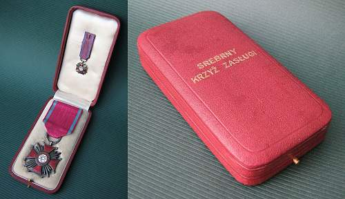 Click image for larger version.  Name:IIRP Silver Cross of Merit cased.jpg Views:154 Size:196.1 KB ID:144173
