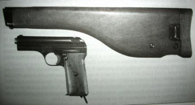 Pistols, Rifles, Machine Guns and Crew Served Weapons of Partitioned Poland and the Polish 2nd Republic