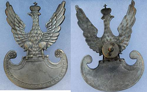 Polish Eagles WWI and WWII