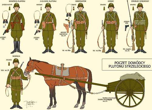 Correct Polish phrase for a horse-drawn military wagon or cart driver?