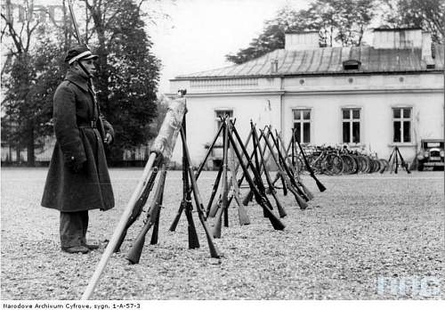 Click image for larger version.  Name:French Rifles.jpg Views:690 Size:106.0 KB ID:447597