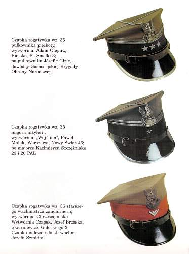 Click image for larger version.  Name:wz 35 rogatywka caps.jpg Views:997 Size:231.0 KB ID:460679