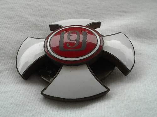 Polish pre war badge  for opinion