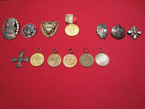 Need help with polish and misc medals and pins