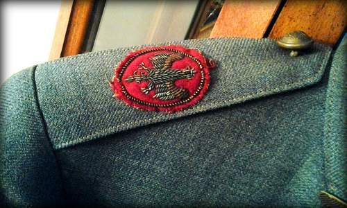 Hallers Army  Uniform