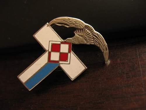 Polish Air Force badge?